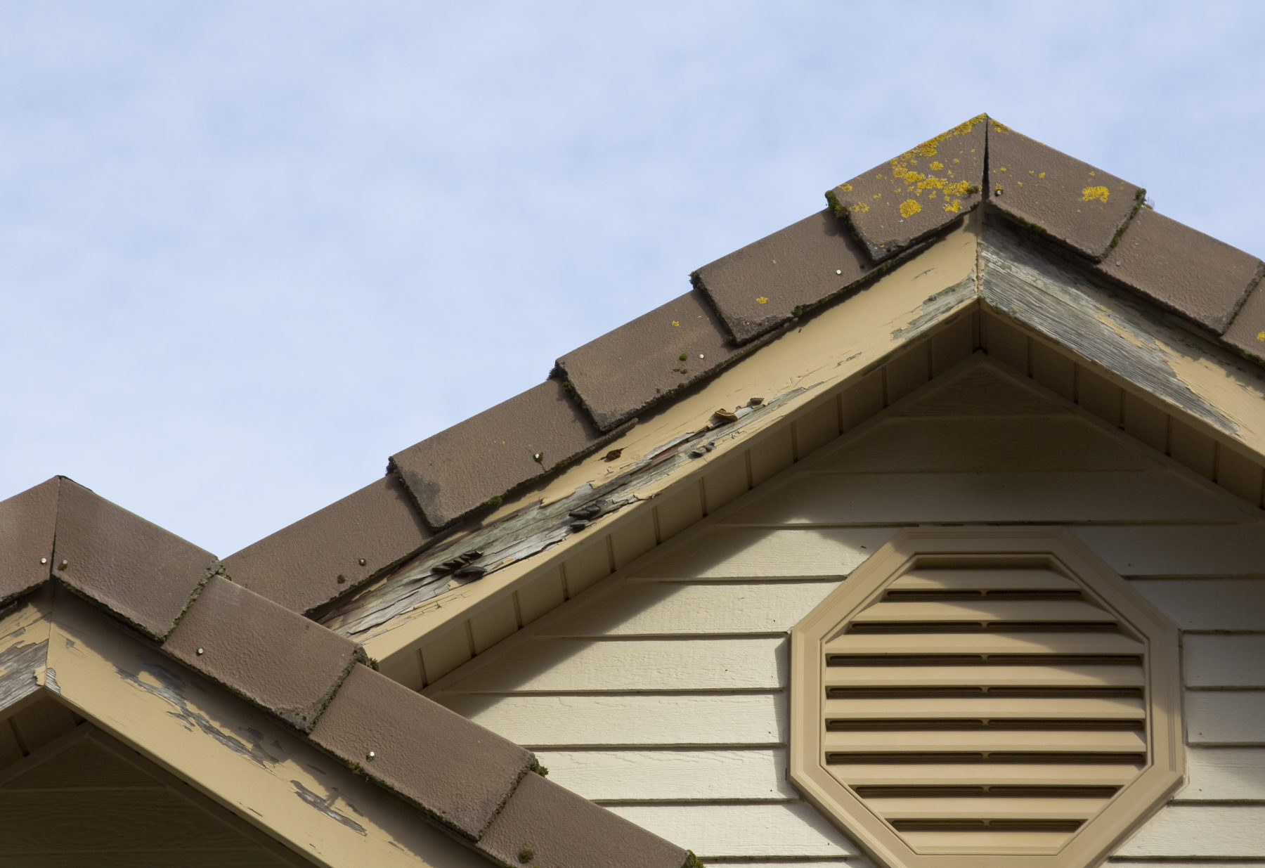 home with termite damage to the wood siding