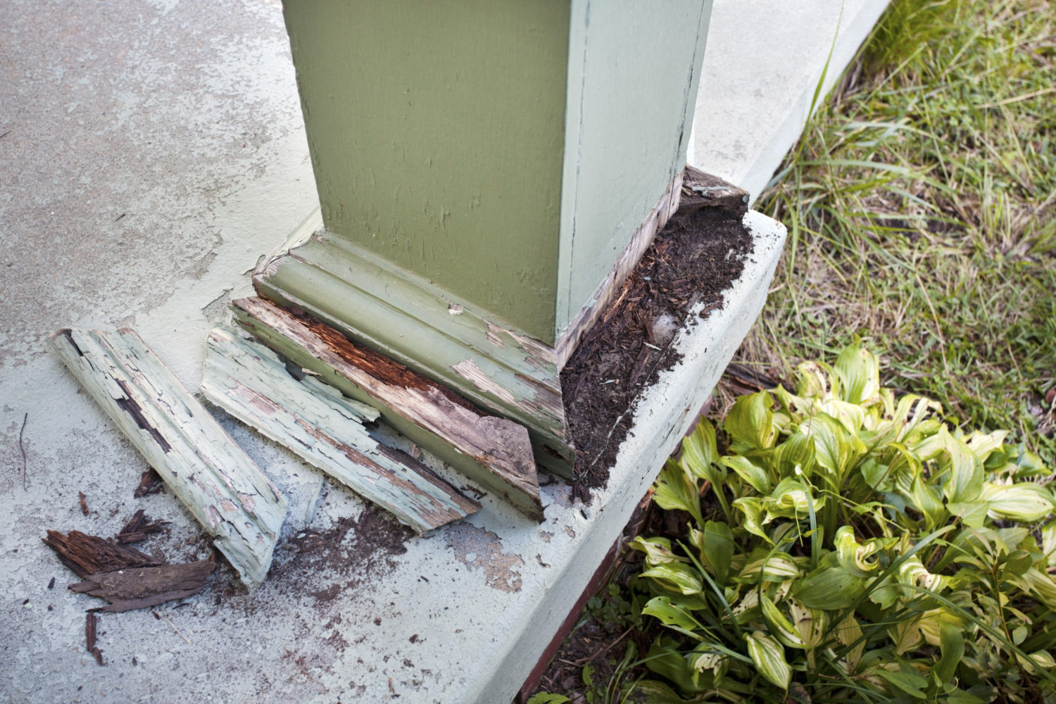 termite damage to a supporting post of a home